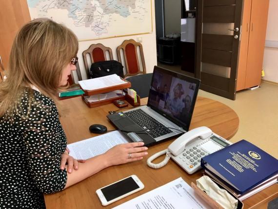 Скайп-совещание с депутатами